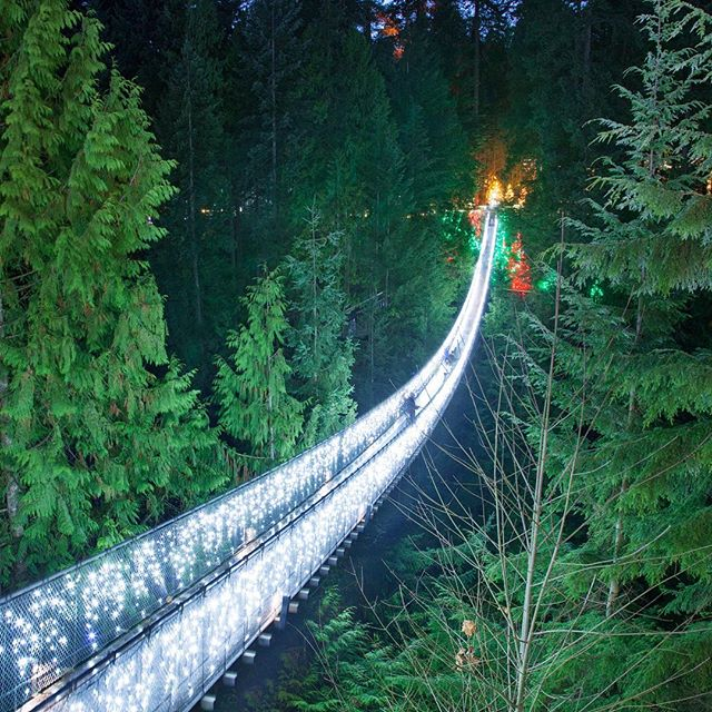 Luzes de Natal no Capilano Suspension Bridge Park em Vancouver Canada