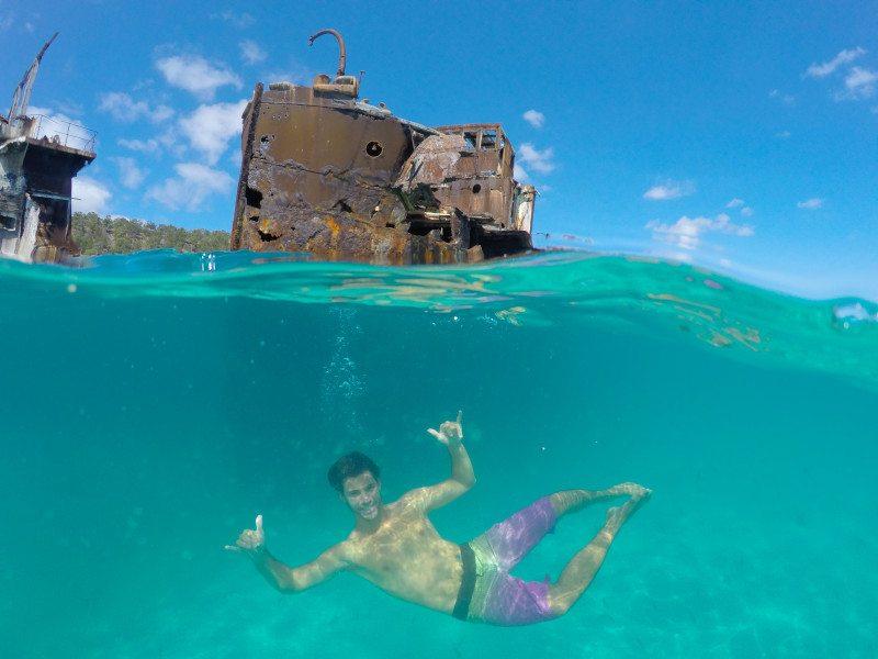 mergulho ilha moreton australia