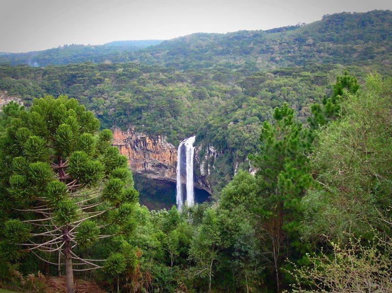 cachoeira de Canela - Rio Grande do Sul