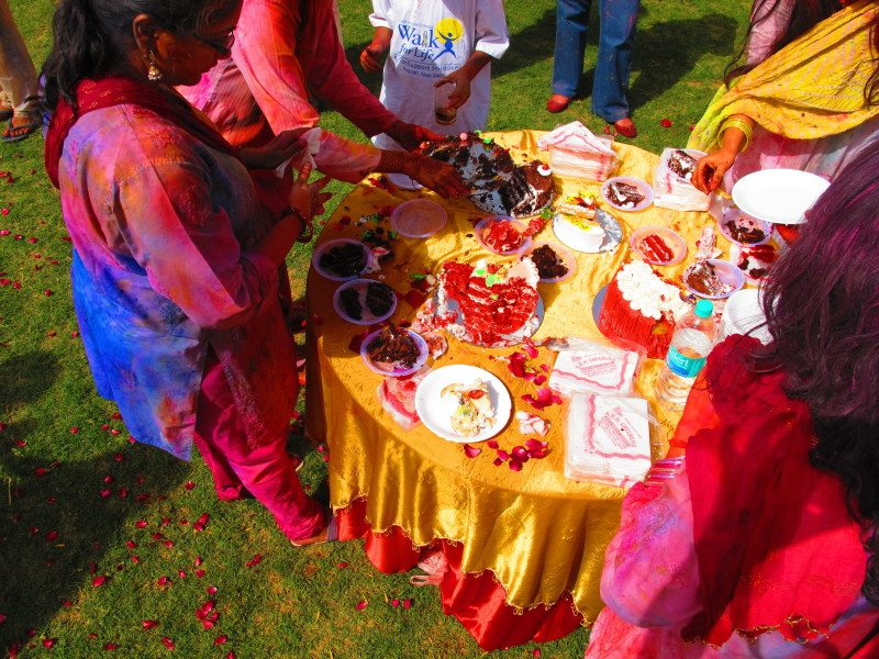 Holi Festival das Cores na Índia. Foto: Patrícia Schussel Gomes