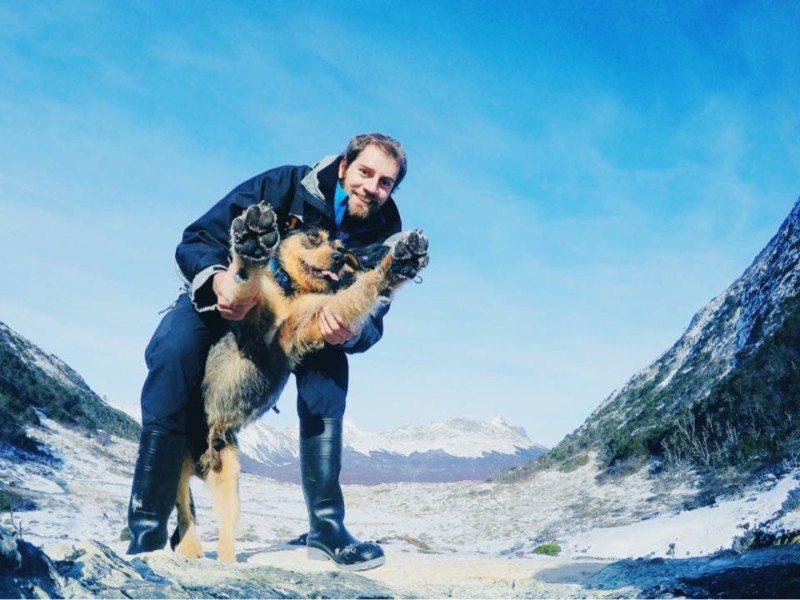 viajar com animais