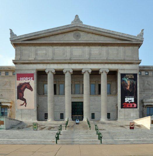 museus em nova york museum of natural history