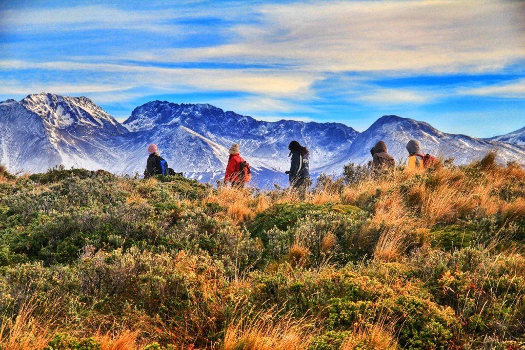 Pessoas fazendo trekking Foto: Patricia Schussel