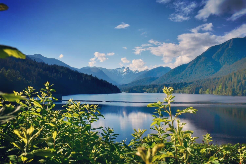 Cleveland Dam. Vancouver, BC. Foto: Virginia Falanghe