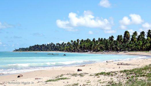 As melhores praias do Nordeste