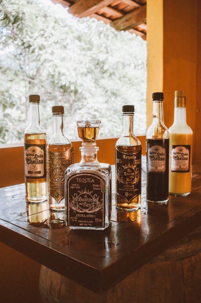 Fazer um tour em uma distilaria para conhecer o sabor real da bebida é uma das paradas indispensáveis de o que fazer em Puerto Vallarta