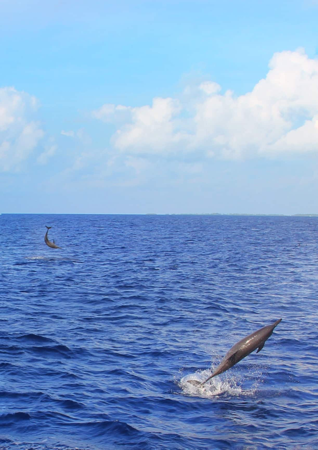 ilhas maldivas lua de mel Foto: Joli Ribeiro