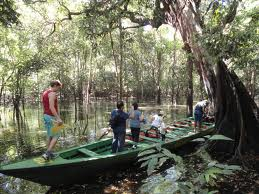o que fazer na amazonia