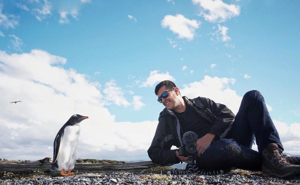 pinguinera de san martillo