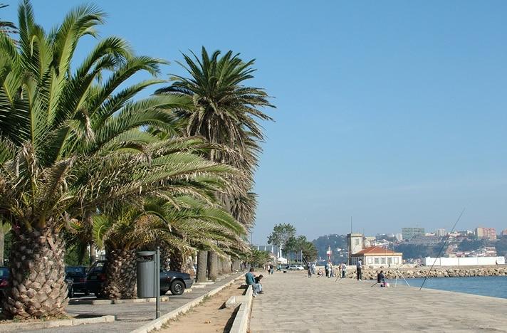 o que fazer na cidade do porto em portugal