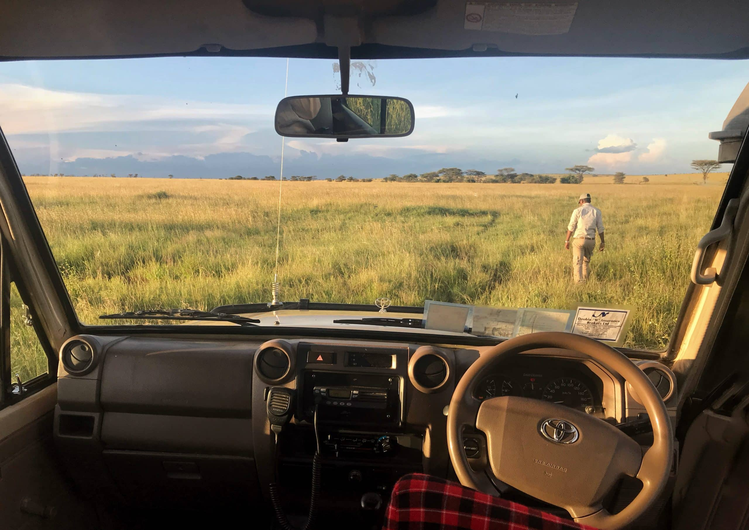 safari no serengeti