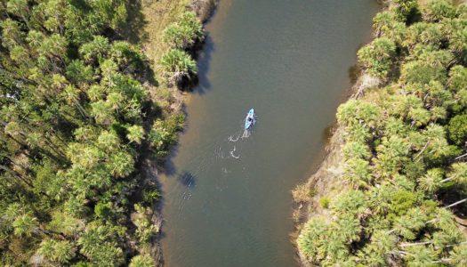 Adventure Coast: a Rota de Aventuras Ecológicas na Flórida