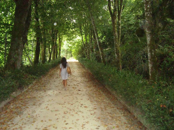 Sintra Portugal: Quando ir, O que fazer, Onde comer, e muito mais!