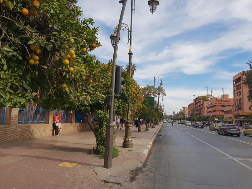 As ruas de Marrakech com seus aromas e cores - Foto: Cau Pelegrini