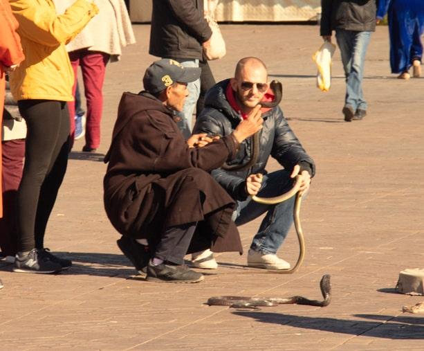 Encantador de Serpente na Praça Jemaa El Fnd