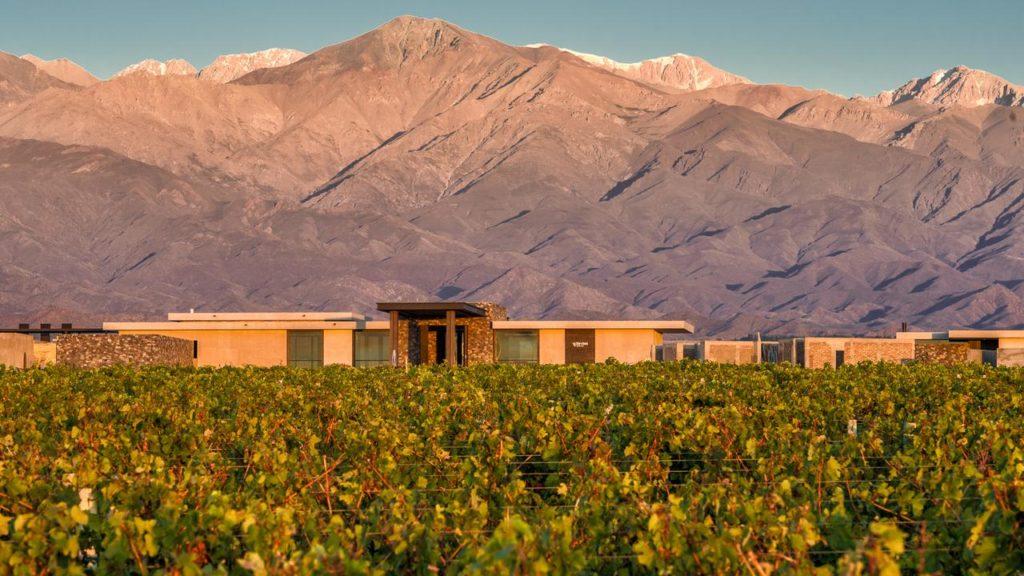 Vista da vinícola em frente ao The Vines Resort & Spa.