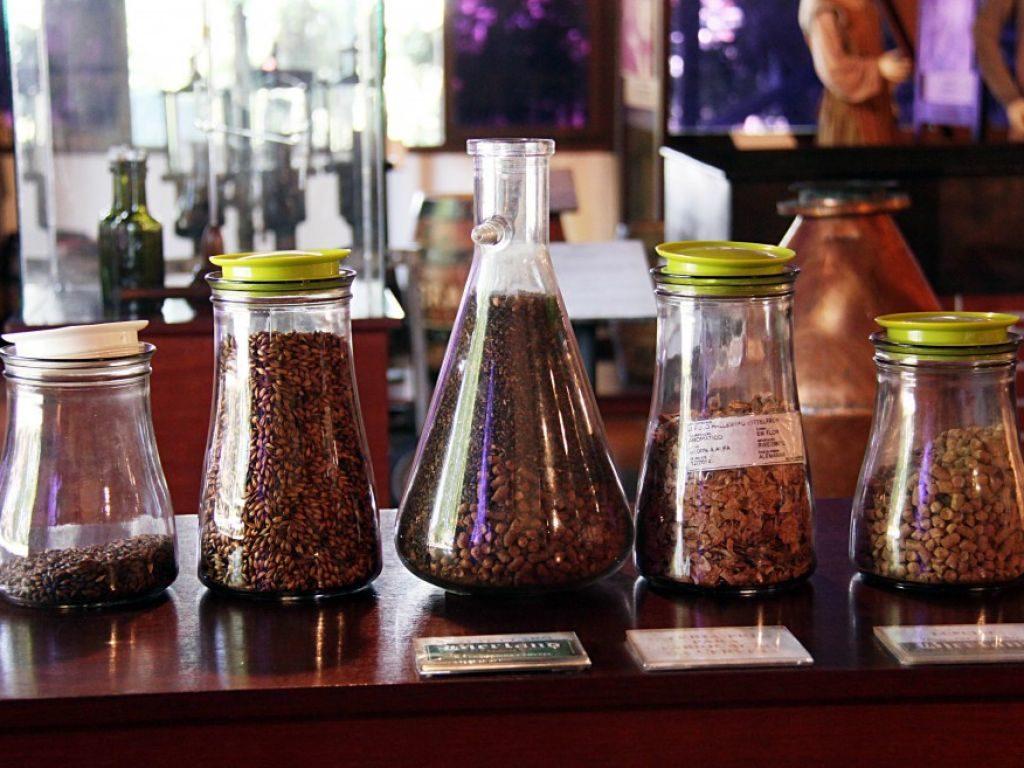 Imagem com 5 recipientes com grãos, no Museu da Cerveja em Blumenau. Foto do site Turismo Blumenau.