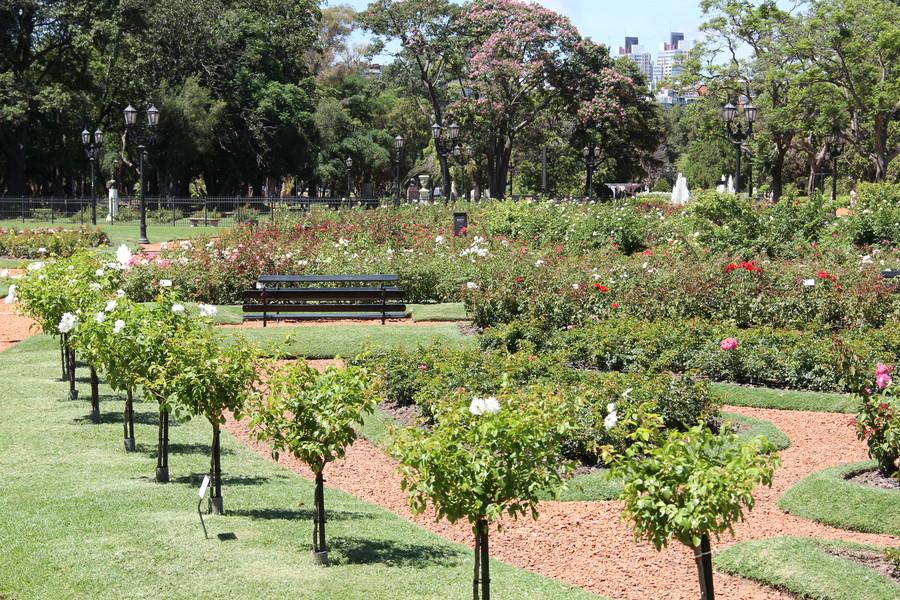 O El Rosedal no Parque 3 Febrero - Foto: Buenos Aires Ciudad