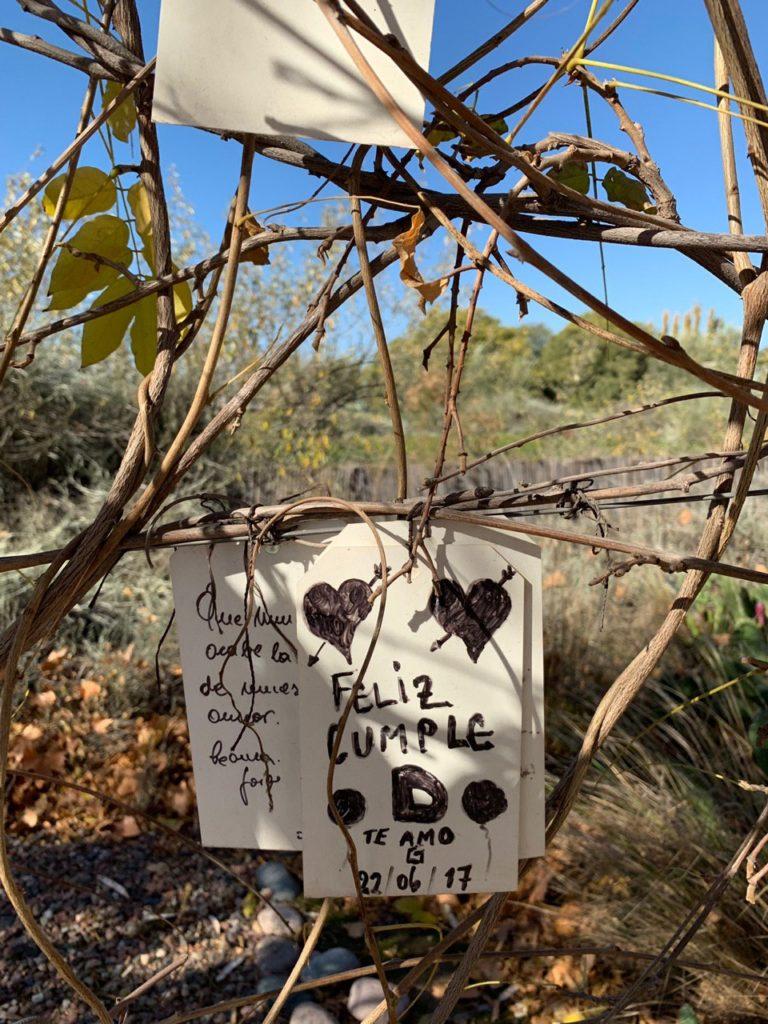 Mensagens em cartões penduradas em árvores do hotel. Foto de Bruno Tavares