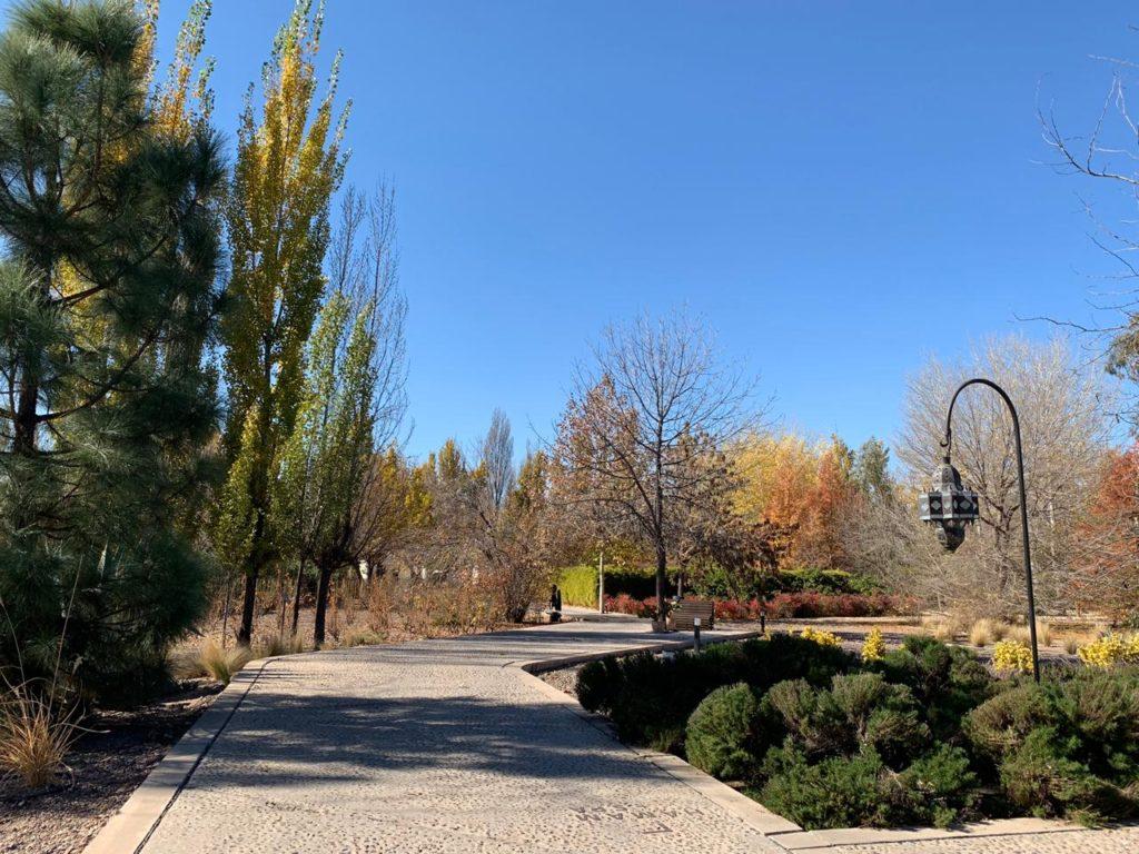 Vista de jardim da entrada do Entre Cielos Mendoza, em dia de céu azul limpido. Foto: Bruno Tavares