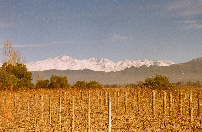 O que fazer em Mendoza - Foto: Natalia Cortesi - Via Flickr
