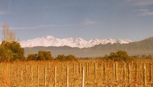 Mendoza, na Argentina – O Guia Completo da Cidade e Vinícolas