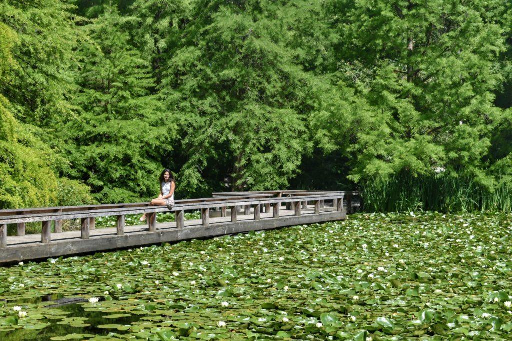 Um das lindas paissagens do VanDusen Botanical - Foto: Virginia Falanghe - O que fazer em Vancouver