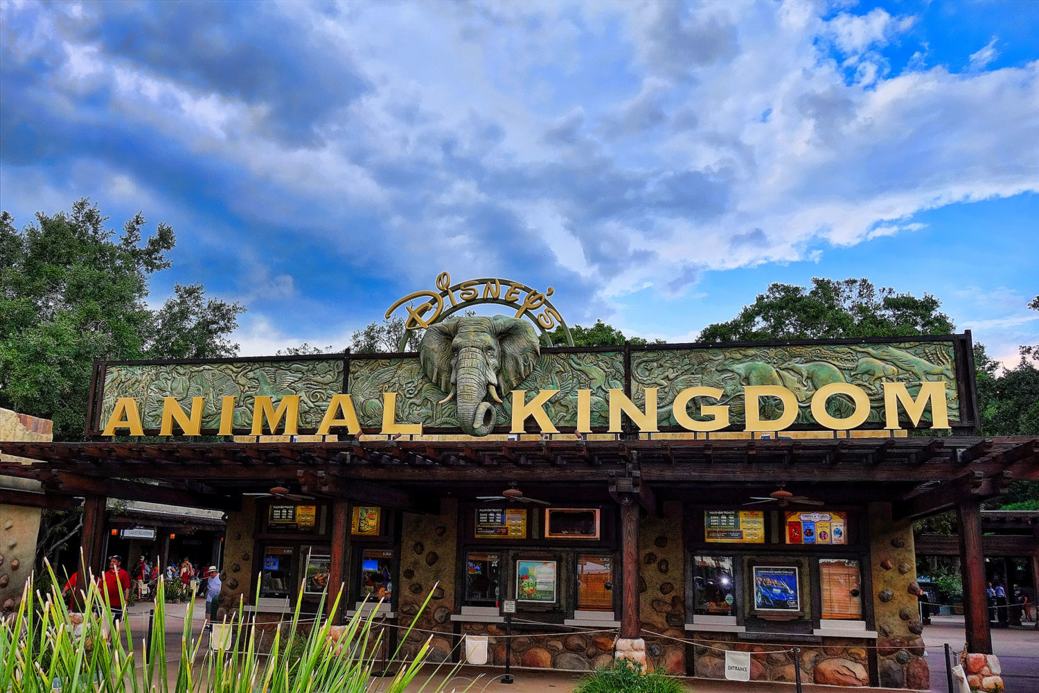 Entrada do animal kingdom