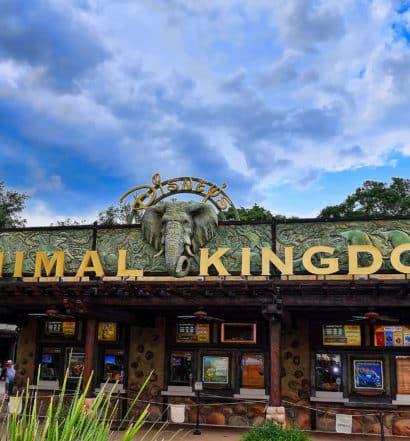 Entrada do animal kingdom