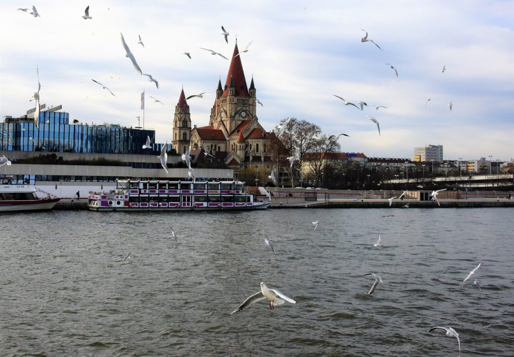 Vista do rio Danúbio em Viena com uma igreja ao fundo e passaros voando