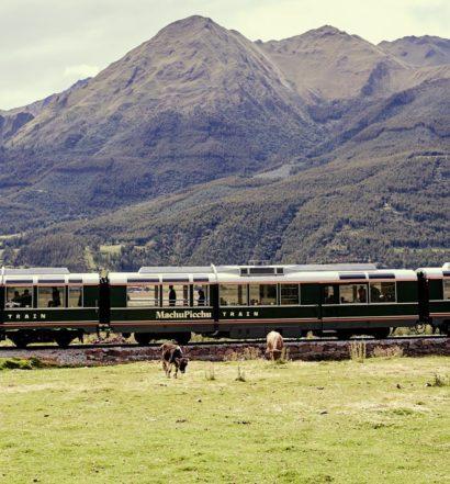 O trem da Inca Rail passando sobre os trilhos em meio ao campo, com montanhas ao fundo e animais pastando na grana.