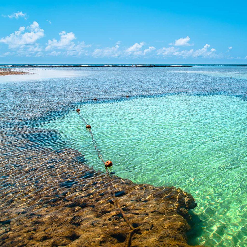 Vista de piscinas naturais no mar de Porto de Galinhas
