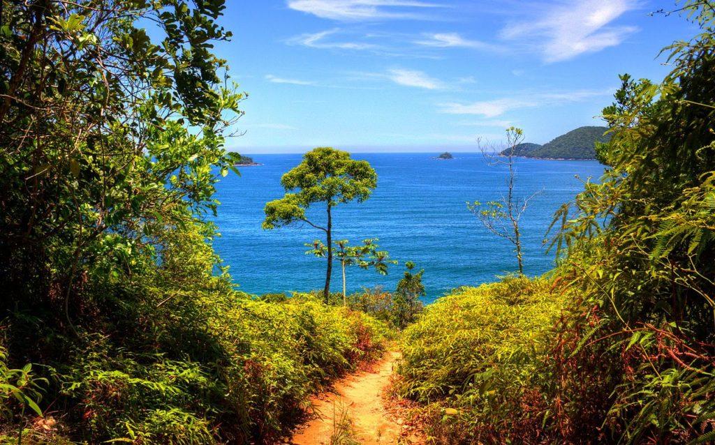 Vista de parte de trilha em direção a uma das melhores praias de Ubatuba, a Praia do Cedro.