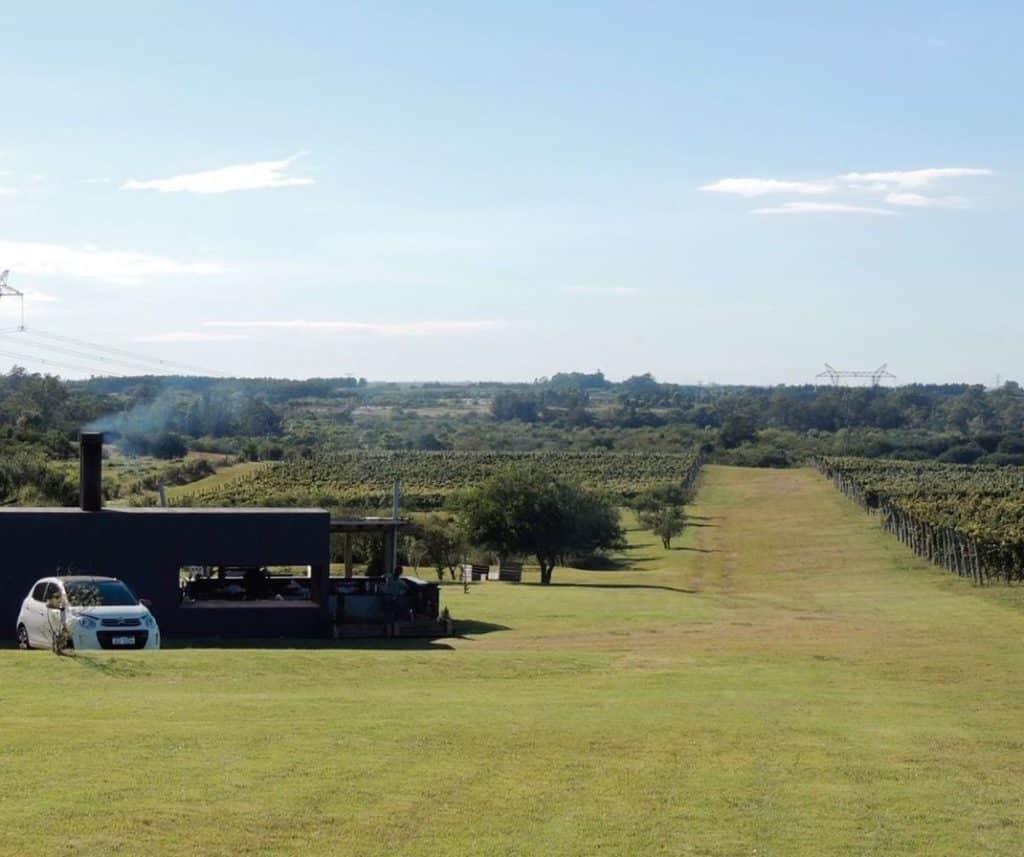 Nas vinícolas do Uruguai você pode começar o dia com esse visual na Bodega Artesana - vinicolas Uruguai