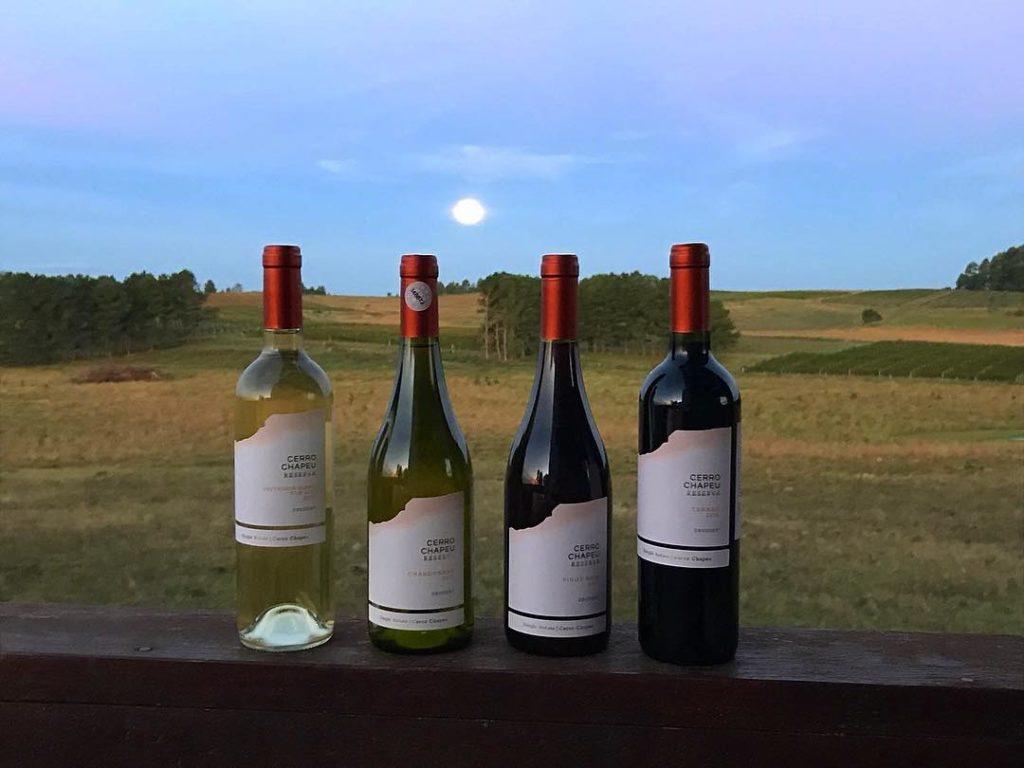 Bodega Cerro Chapeu - vinicolas Uruguai