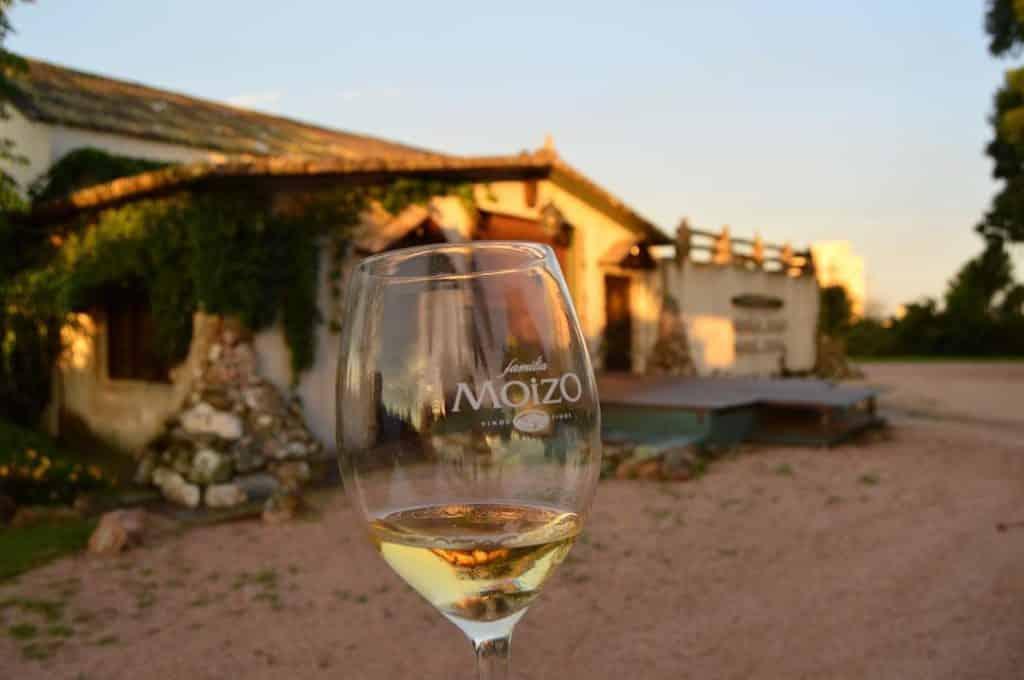 Aproveite para degustar os vinhos e curtir esse visual na Bodega Família Moizo