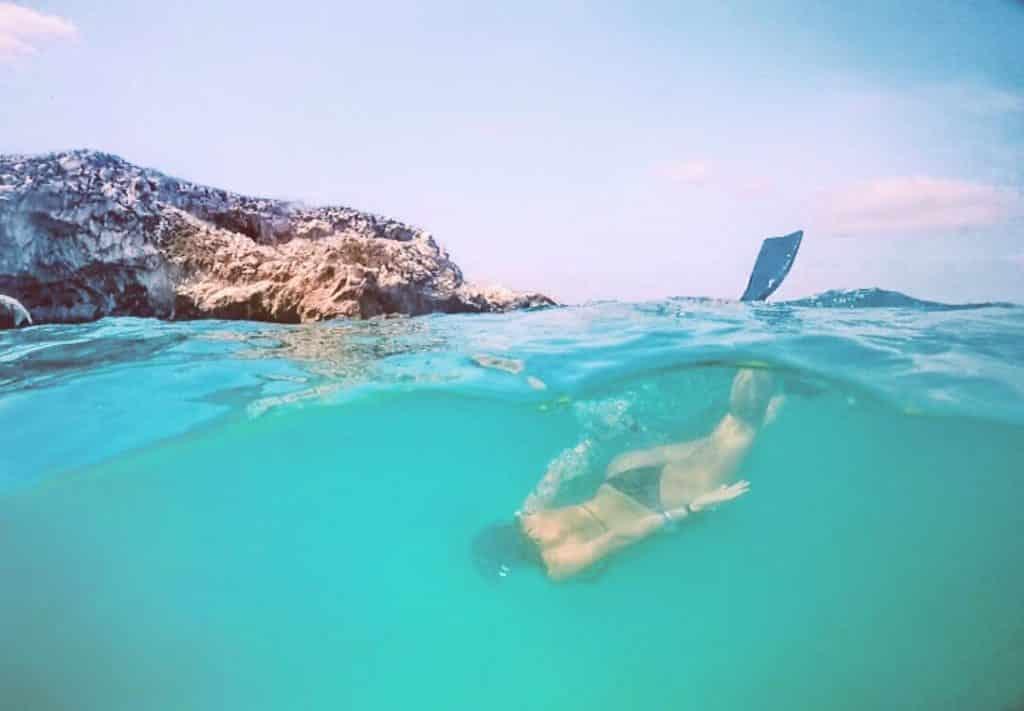 Mergulho nas Ilhas Marietas em Puerto Vallarta