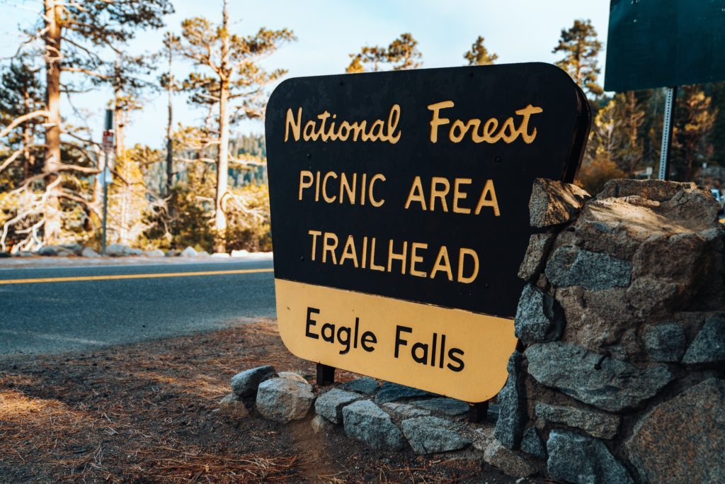 Foto de placa indicando área para piquenique em meio à floresta, próximo a trilha de Eagle Falls (cachoeira)