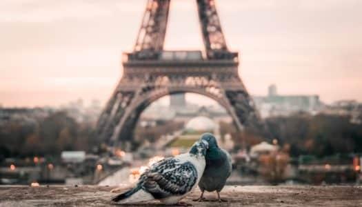 Lua de mel em Paris – Como planejar uma Viagem Inesquecível