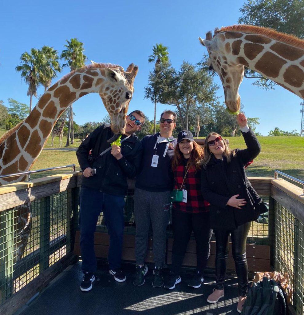 O Serengeti Safari no Busch Garden Tampa