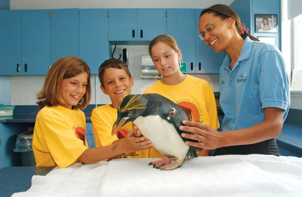 Foto de funcionária do SeaWorld cuidando de pinguim e mostrando a três crianças o animal em um centro de cuidados.