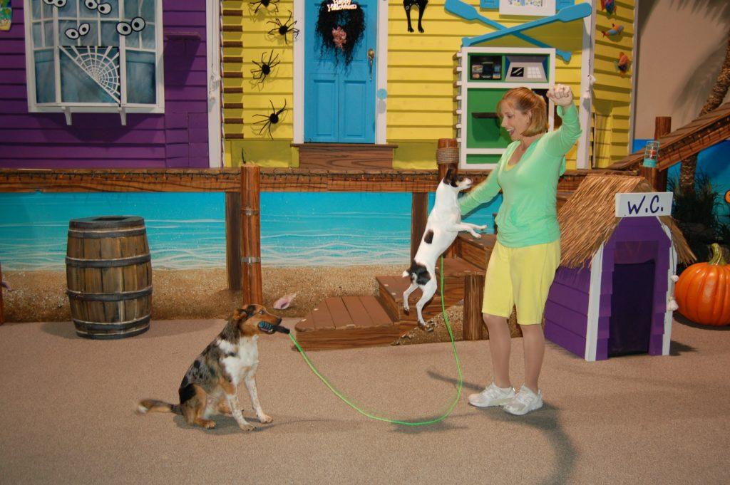 Cenário colorido onde dois cachorros se apresentam junto de uma treinadora no SeaWorld Orlando