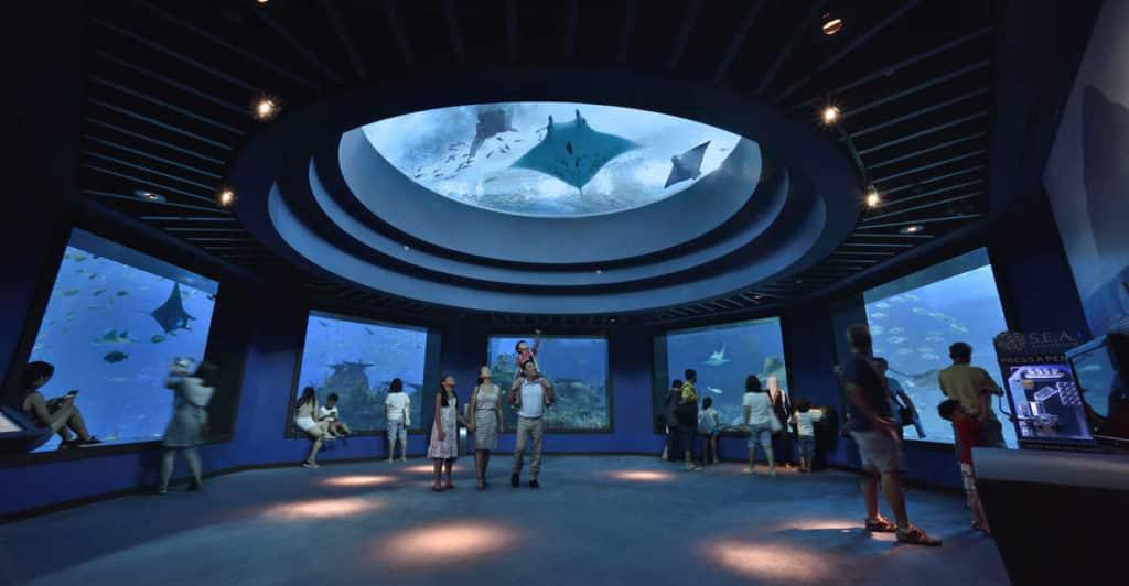 O SEA Aquarium em Sentosa Singapura