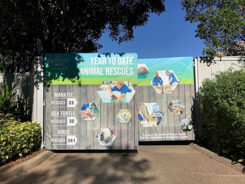 O Centro de Resgate e Reabilitação de animais marinhos do SeaWorld Orlando - Foto: Flávio Antunes