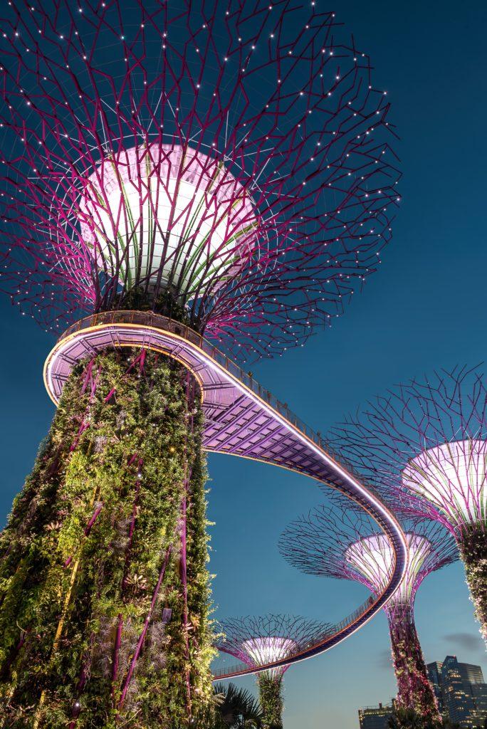 As supertrees grove no Garden by the Bay em Singapura