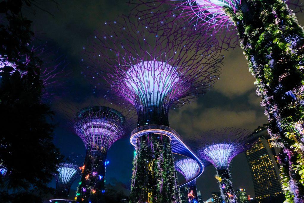 As supertrees grove do Garden by the Bay, um dos principais pontos turísticos de Singapura