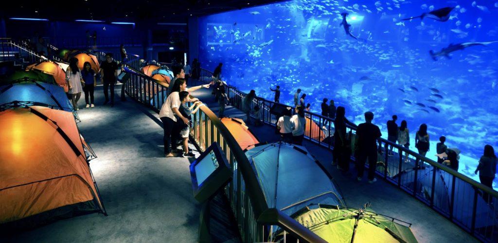 O Sea Aquarium na Ilha de Sentosa, em Singapura