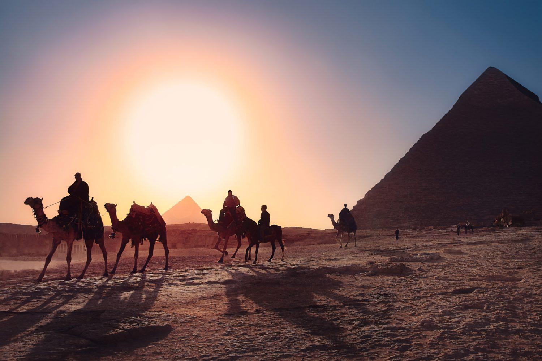 camelos caminhando ao por do sol a frente das piramides