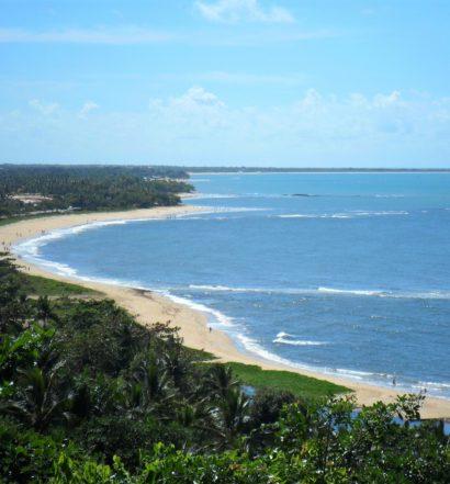 Praia com extensa faixa de areia e mata na Bahia