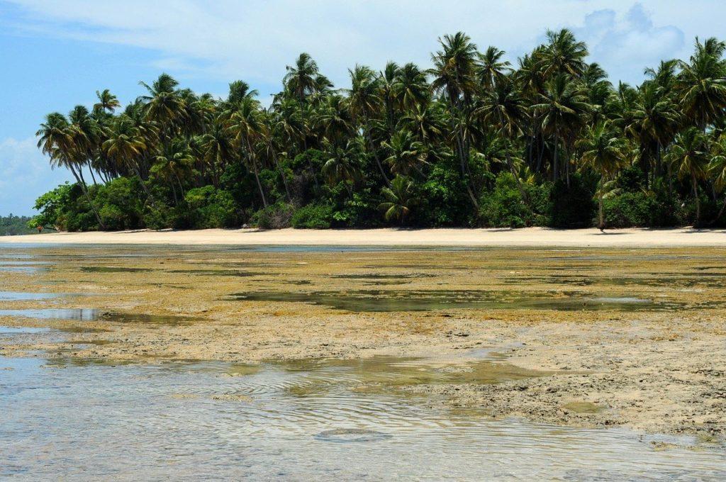 Mar na Ilha de Boipeba